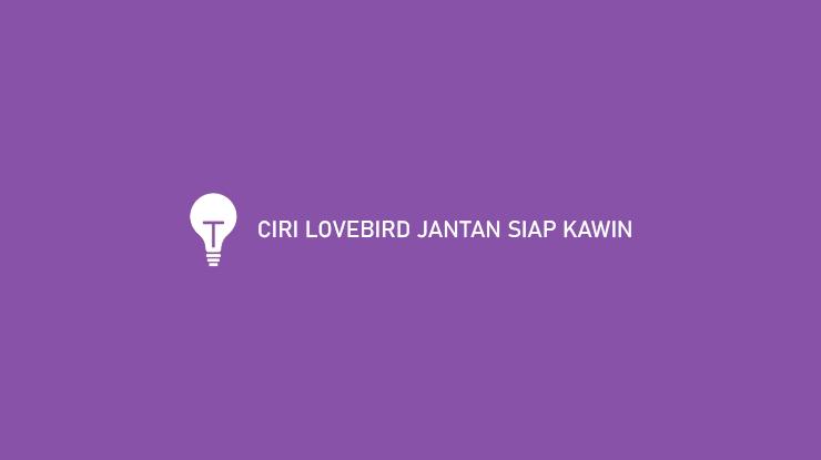CIRI LOVEBIRD JANTAN SIAP KAWIN