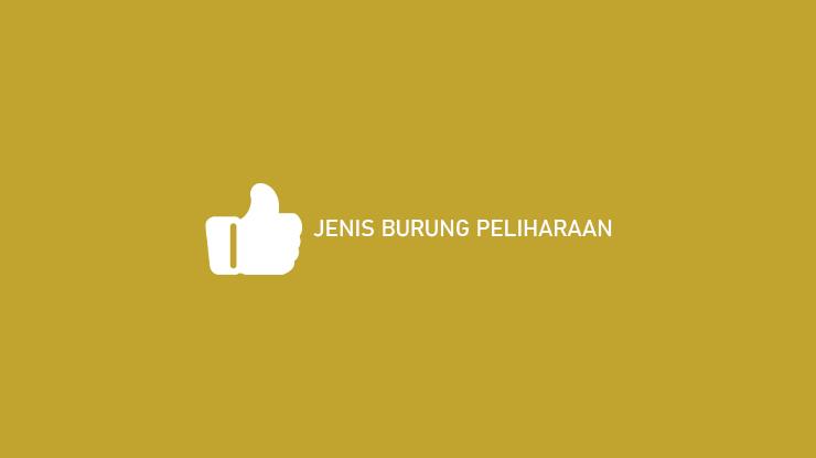 JENIS BURUNG PELIHARAAN