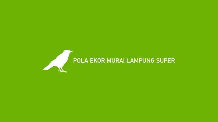POLA EKOR MURAI LAMPUNG SUPER