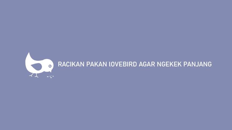 RACIKAN PAKAN LOVEBIRD AGAR NGEKEK PANJANG