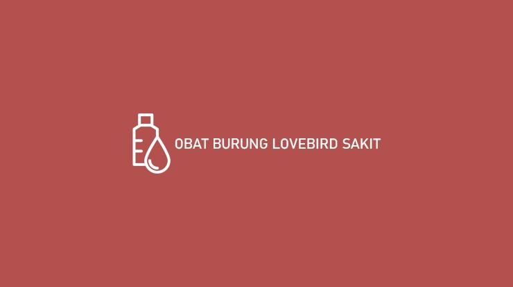 obat burung lovebird sakit