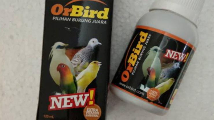 Obar Lovebird Sakit Orbird