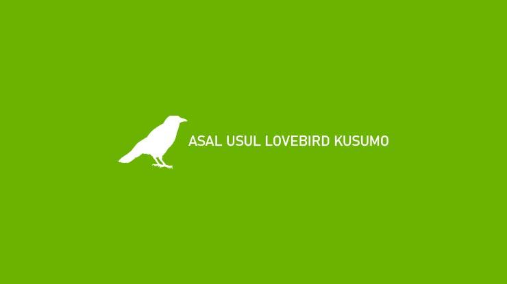 ASAL USUL LOVEBIRD KUSUMO