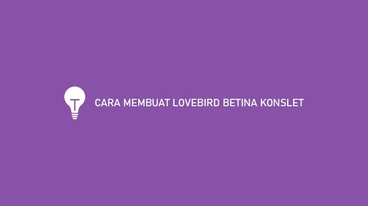 CARA MEMBUAT LOVEBIRD BETINA KONSLET