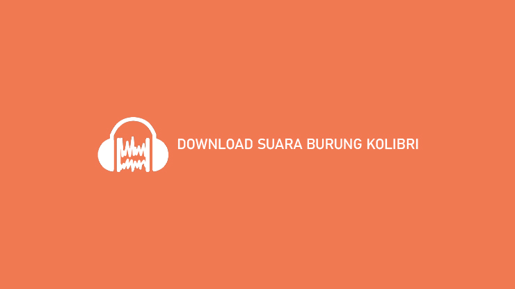DOWNLOAD SUARA BURUNG KOLIBRI