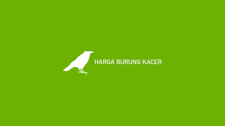HARGA BURUNG KACER