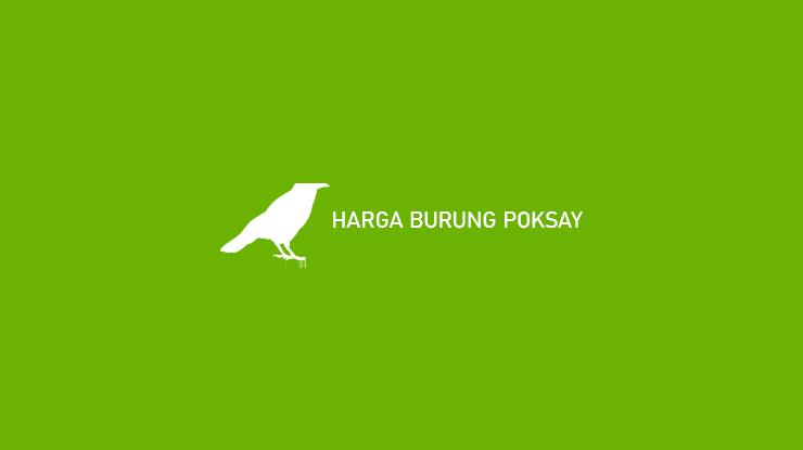Harga Burung Poksay