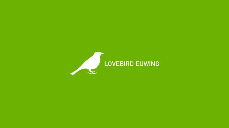 LOVEBIRD EUWING 1