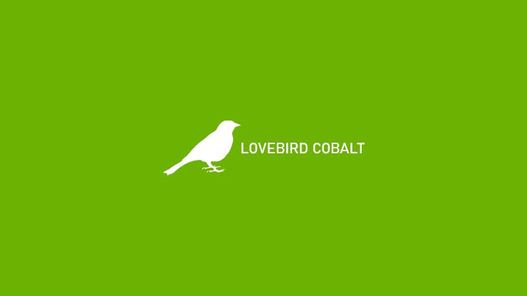 Lovebird Cobalt 1