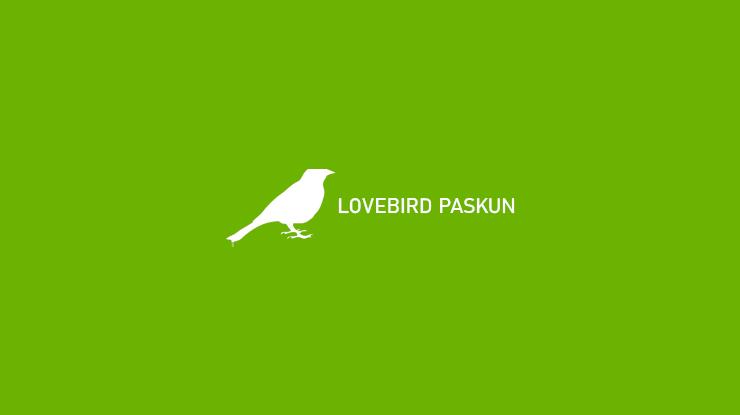 Lovebird Paskun