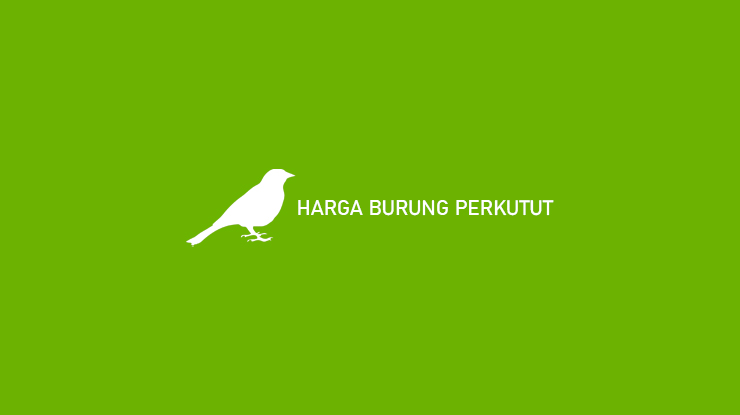 Harga Burung Perkutut