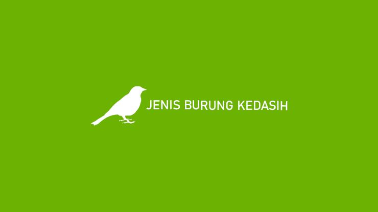 Jenis Burung Kedasih