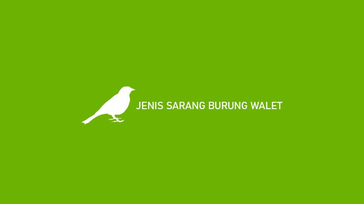 Jenis Sarang Burung Walet