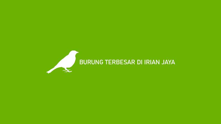 Burung Terbesar di Irian Jaya